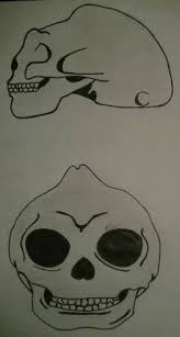 dibujo de craneo de sirena