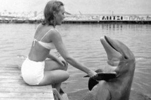 El delfín que amo